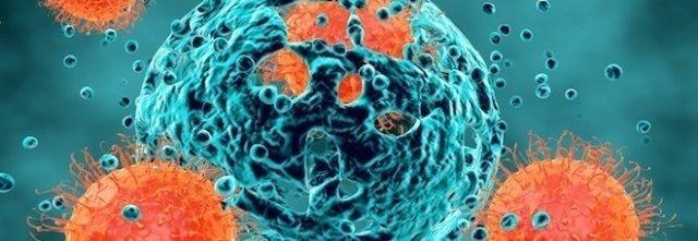 Sonda per intercettare le metastasi tumorali