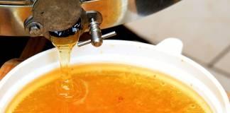 Abruzzo miele