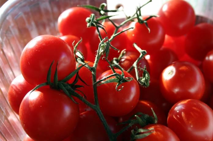 Pomodoro di Pachino Sicilia