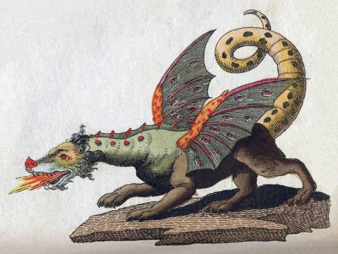 Calabria Drago